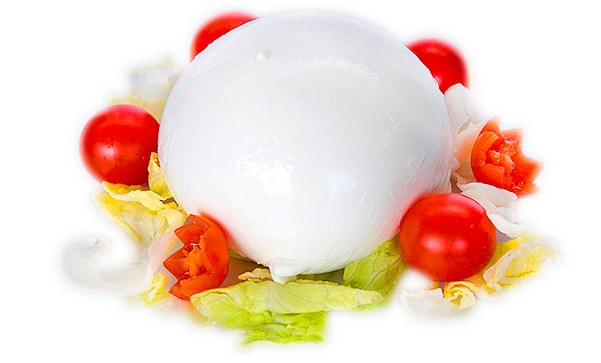 Mozzarella-home-page-scontornata